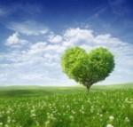 apertura de corazón