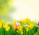 Prepararse dietéticamente para primavera yverano