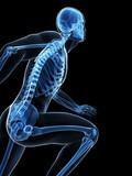 Cuidar los huesos