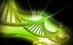 epigenetica y salud
