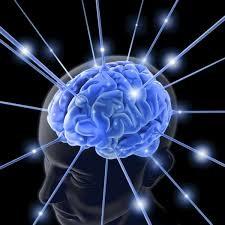 Lo que nuestro cerebronecesita