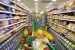 nuevos horizontes en nutrición