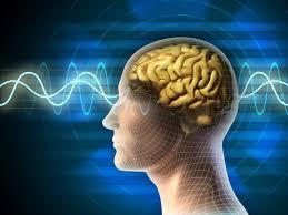 mente-cerebro