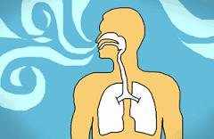 Patrón Respiratorio Personal