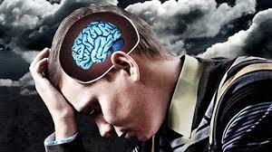El cerebro en el estrés