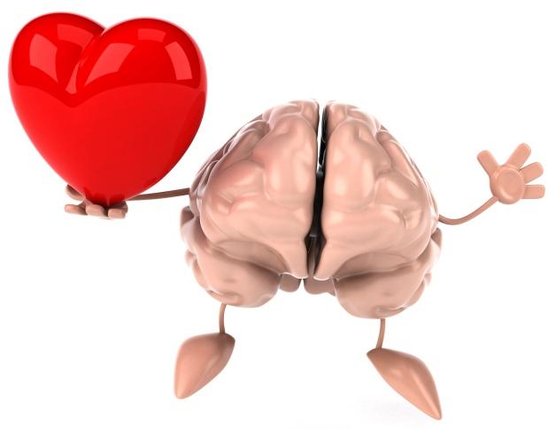 Corazón y cerebro: historia de unaamistad